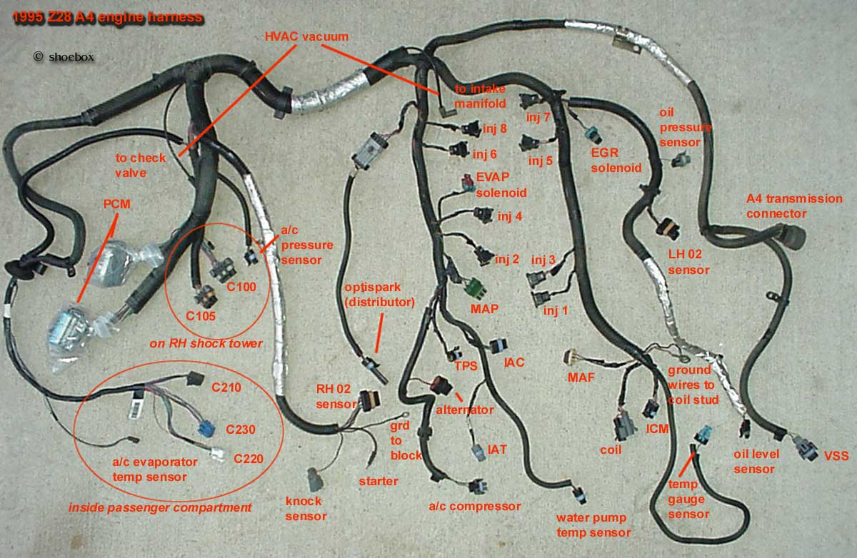 1995_Z28_engine_harness_A4 porsche hybrids wiki lt wiring harness modification modifying an lt1 wiring harness at bakdesigns.co